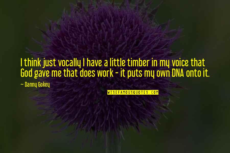 A Just God Quotes By Danny Gokey: I think just vocally I have a little