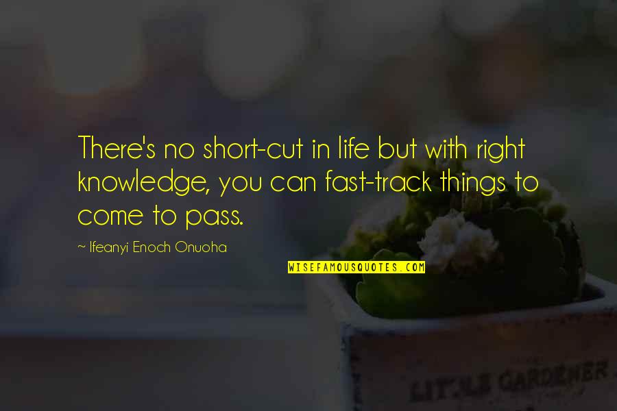 A Life Cut Too Short Quotes By Ifeanyi Enoch Onuoha: There's no short-cut in life but with right