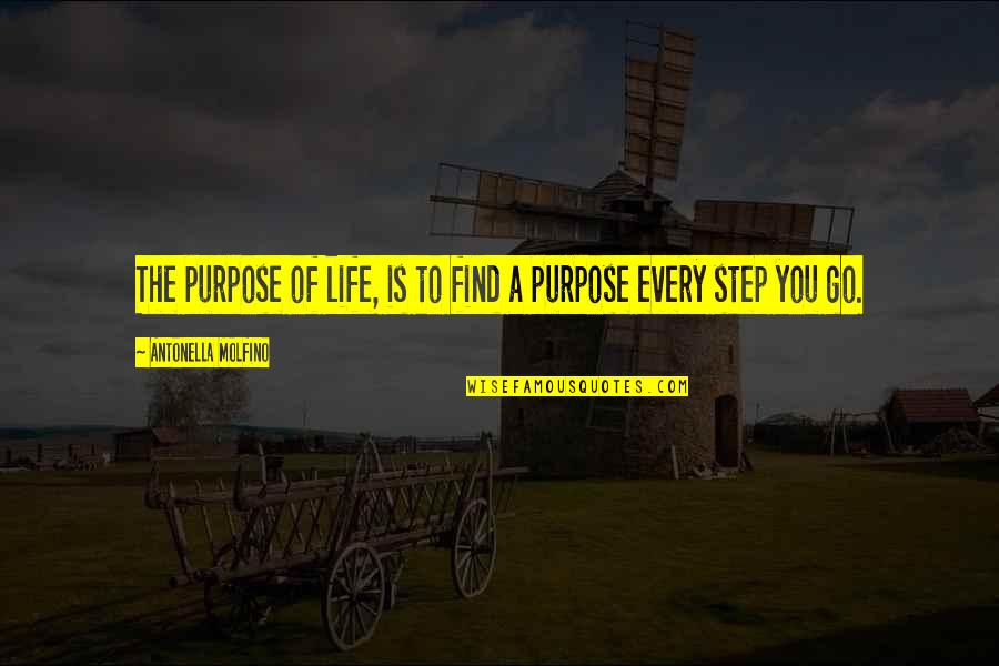 A Life Of Purpose Quotes By Antonella Molfino: The purpose of life, is to find a