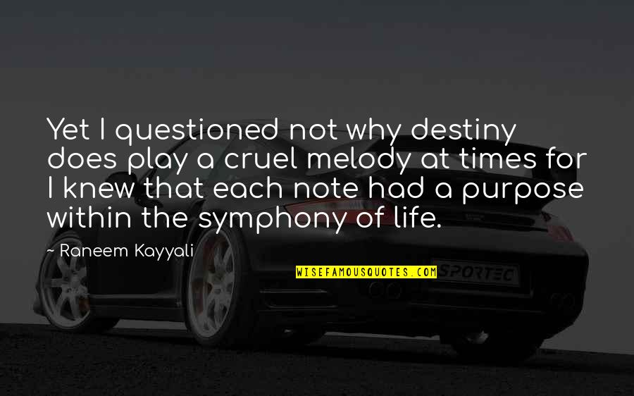 A Life Of Purpose Quotes By Raneem Kayyali: Yet I questioned not why destiny does play