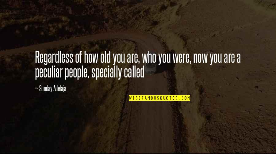A Life Of Purpose Quotes By Sunday Adelaja: Regardless of how old you are, who you