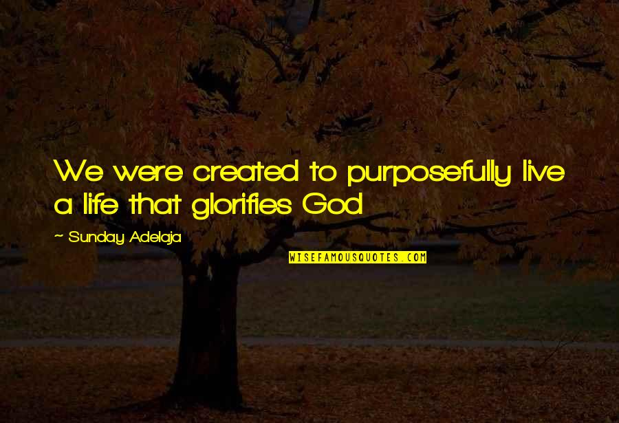 A Life Of Purpose Quotes By Sunday Adelaja: We were created to purposefully live a life