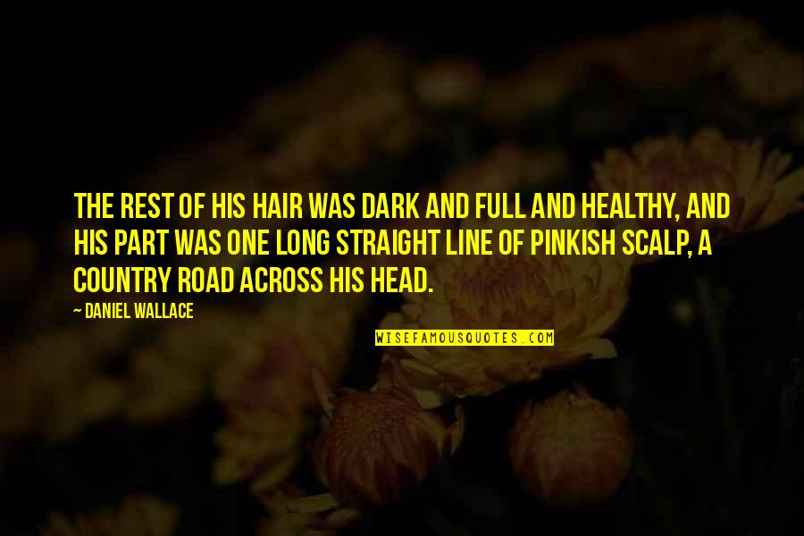 A Long Road Quotes By Daniel Wallace: The rest of his hair was dark and