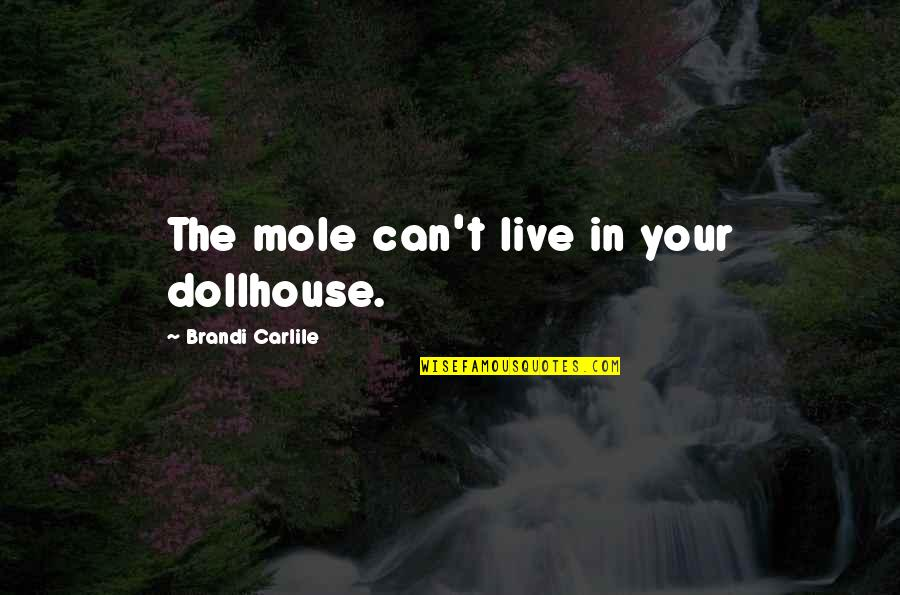 A Mole Quotes By Brandi Carlile: The mole can't live in your dollhouse.