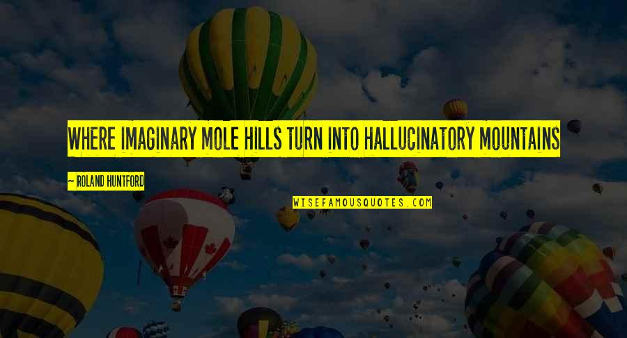 A Mole Quotes By Roland Huntford: Where imaginary mole hills turn into hallucinatory mountains
