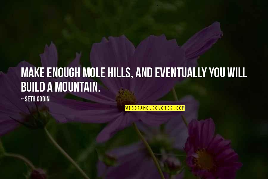 A Mole Quotes By Seth Godin: Make enough mole hills, and eventually you will