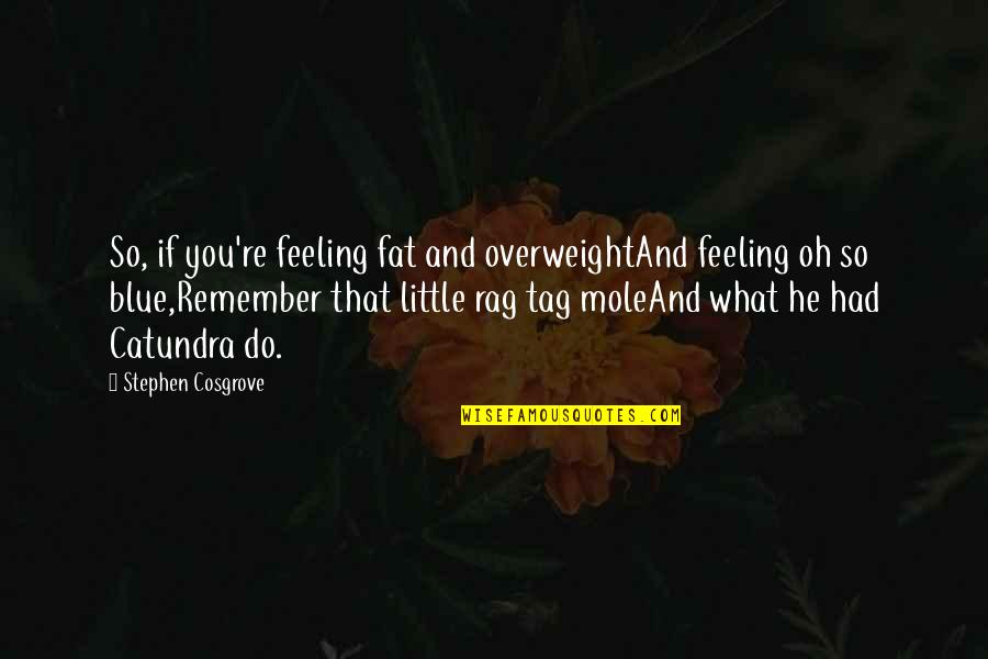A Mole Quotes By Stephen Cosgrove: So, if you're feeling fat and overweightAnd feeling