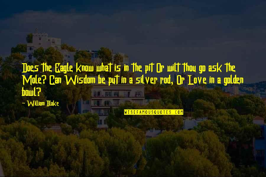 A Mole Quotes By William Blake: Does the Eagle know what is in the