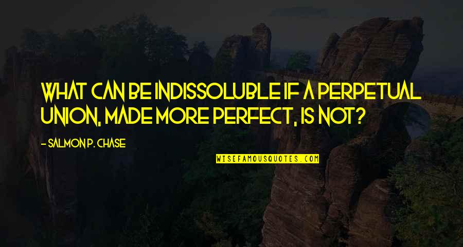 A More Perfect Union Quotes By Salmon P. Chase: What can be indissoluble if a perpetual Union,