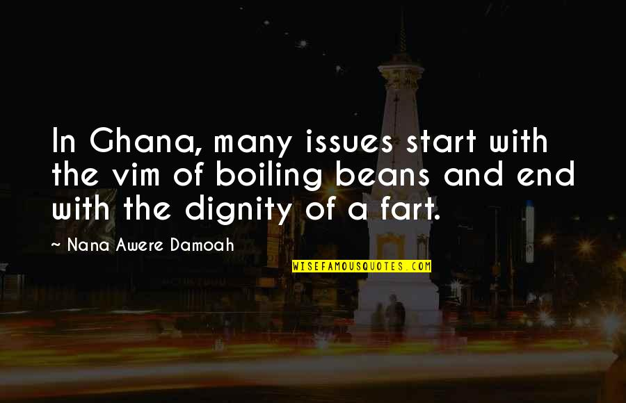 A Nana Quotes By Nana Awere Damoah: In Ghana, many issues start with the vim