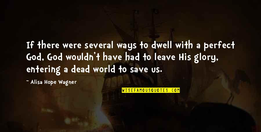 A Perfect World Quotes By Alisa Hope Wagner: If there were several ways to dwell with
