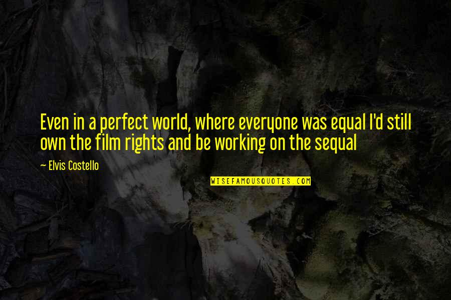 A Perfect World Quotes By Elvis Costello: Even in a perfect world, where everyone was