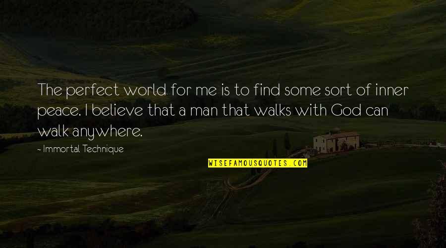 A Perfect World Quotes By Immortal Technique: The perfect world for me is to find
