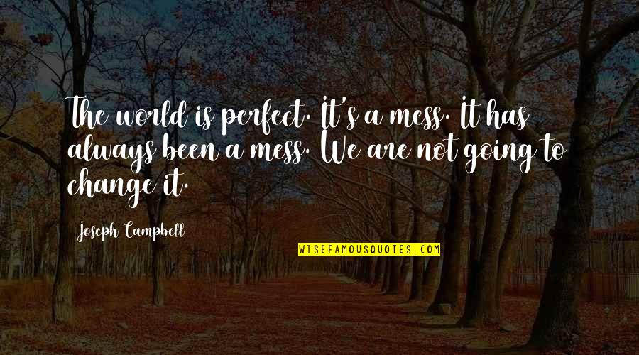 A Perfect World Quotes By Joseph Campbell: The world is perfect. It's a mess. It