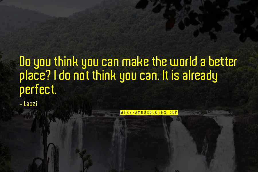 A Perfect World Quotes By Laozi: Do you think you can make the world