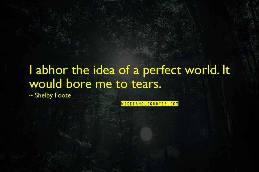 A Perfect World Quotes By Shelby Foote: I abhor the idea of a perfect world.