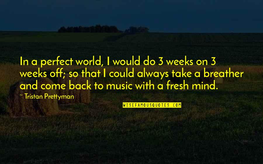 A Perfect World Quotes By Tristan Prettyman: In a perfect world, I would do 3