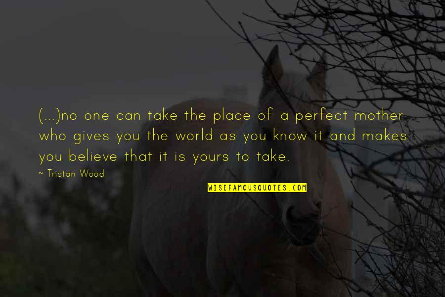 A Perfect World Quotes By Tristan Wood: (...)no one can take the place of a