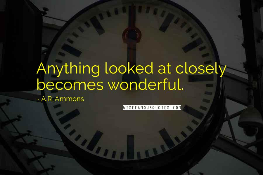 A.R. Ammons quotes: Anything looked at closely becomes wonderful.