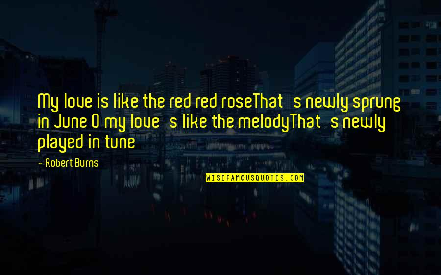 A Red Rose Quotes By Robert Burns: My love is like the red red roseThat's