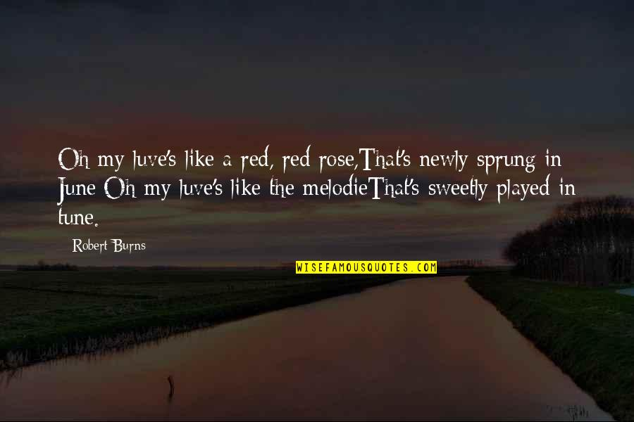 A Red Rose Quotes By Robert Burns: Oh my luve's like a red, red rose,That's