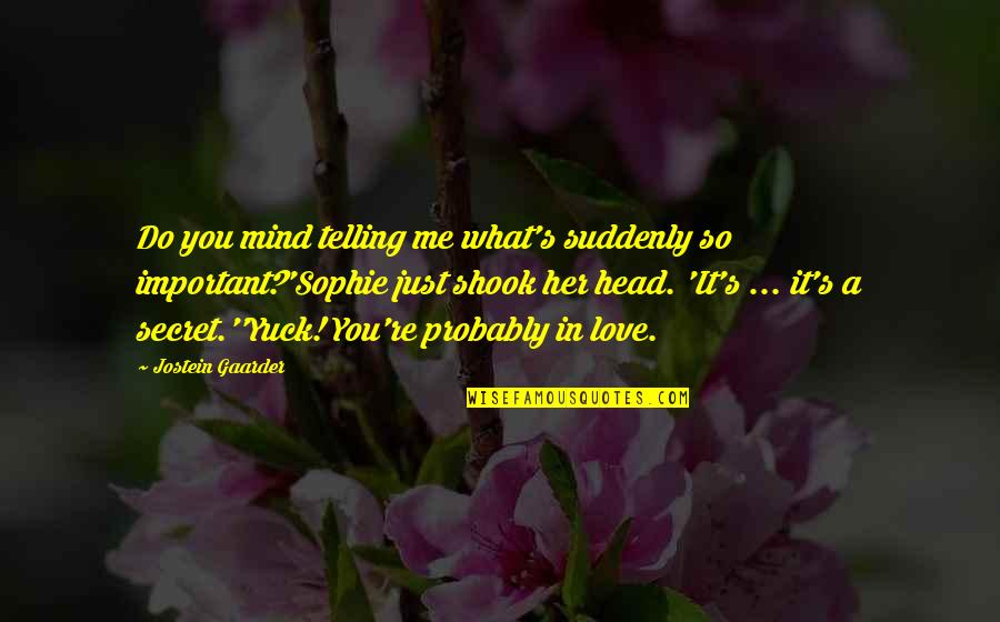 A Secret Love Quotes By Jostein Gaarder: Do you mind telling me what's suddenly so