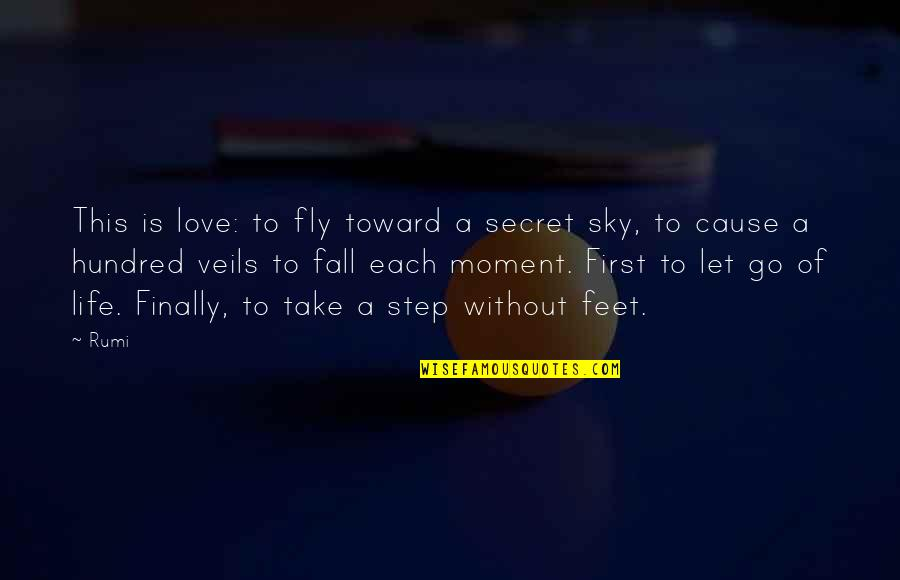 A Secret Love Quotes By Rumi: This is love: to fly toward a secret
