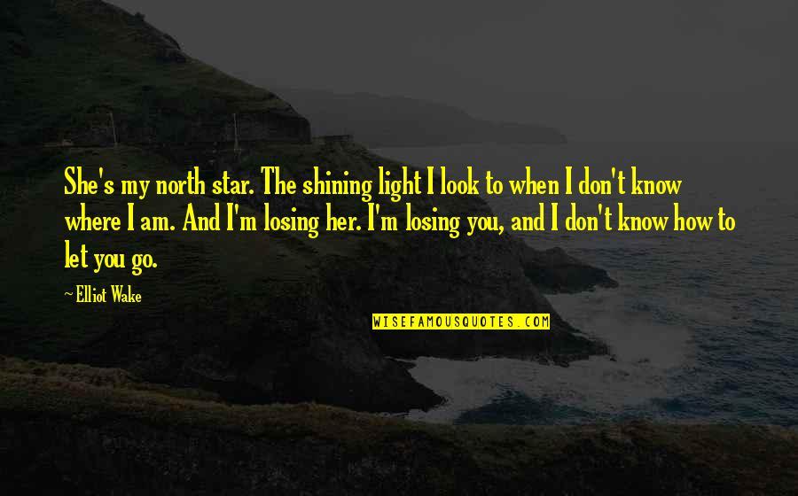 A Shining Star Quotes By Elliot Wake: She's my north star. The shining light I