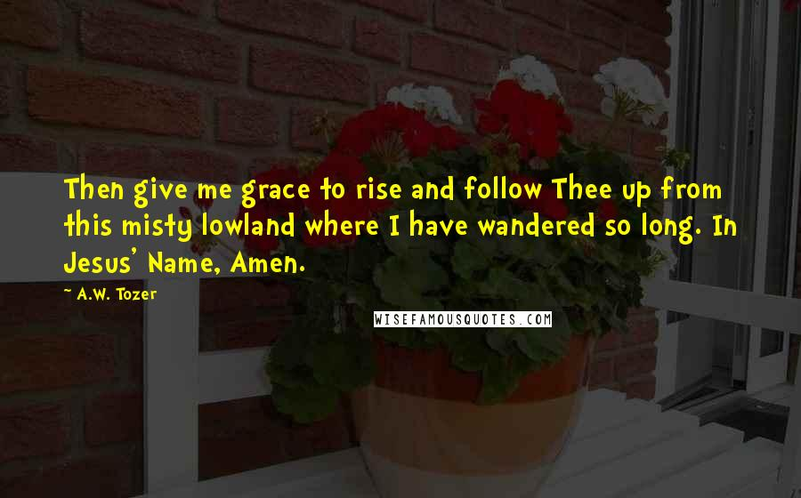 A.W. Tozer quotes: Then give me grace to rise and follow Thee up from this misty lowland where I have wandered so long. In Jesus' Name, Amen.