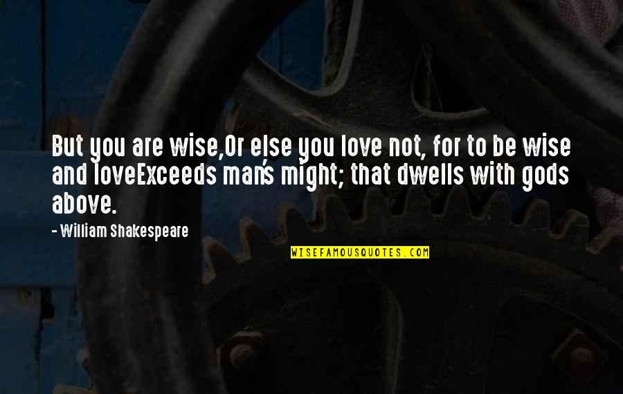 A Wise Man Love Quotes By William Shakespeare: But you are wise,Or else you love not,