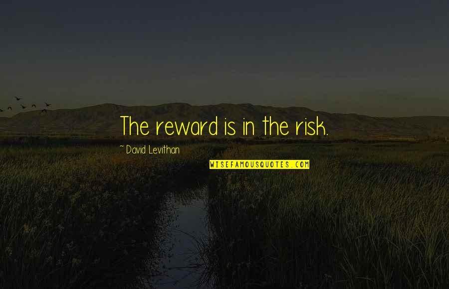 A Woman President Quotes By David Levithan: The reward is in the risk.