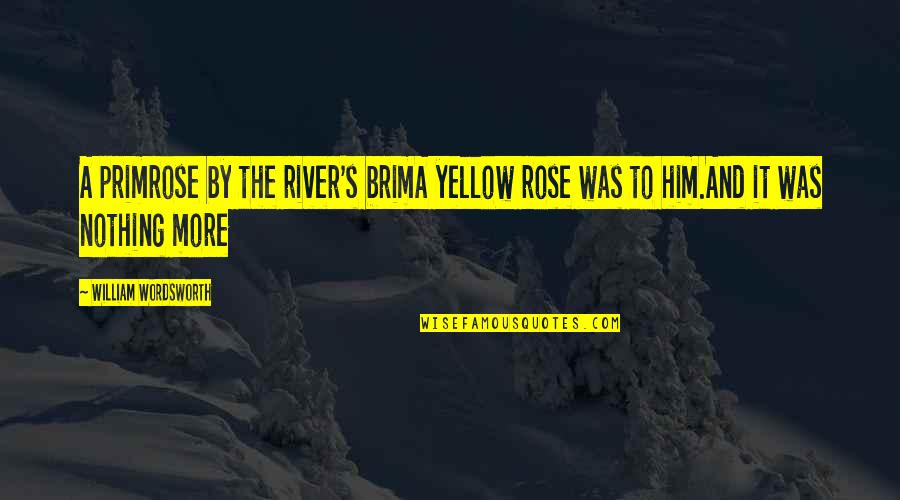 A Yellow Rose Quotes By William Wordsworth: A primrose by the river's brimA yellow rose