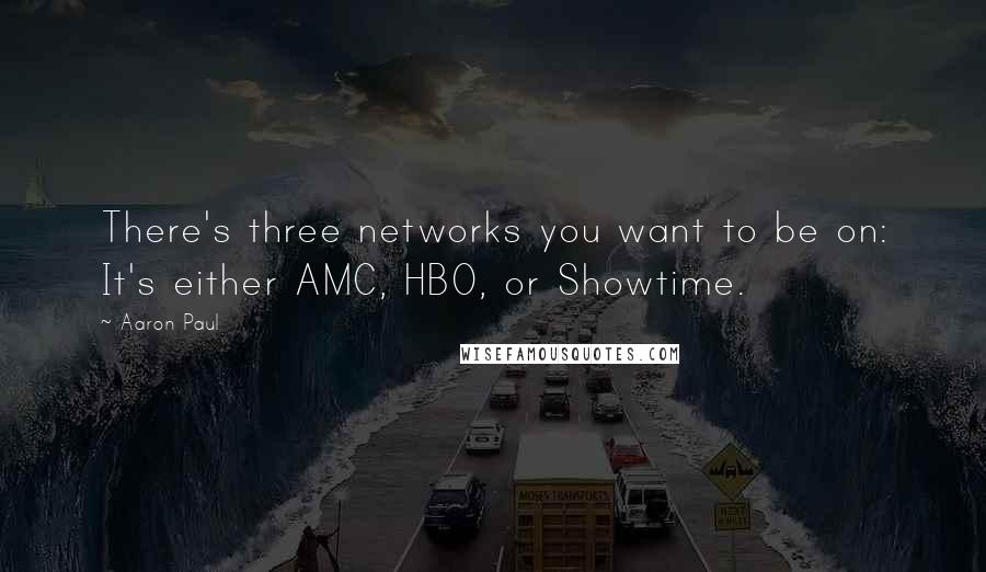 Aaron Paul quotes: There's three networks you want to be on: It's either AMC, HBO, or Showtime.