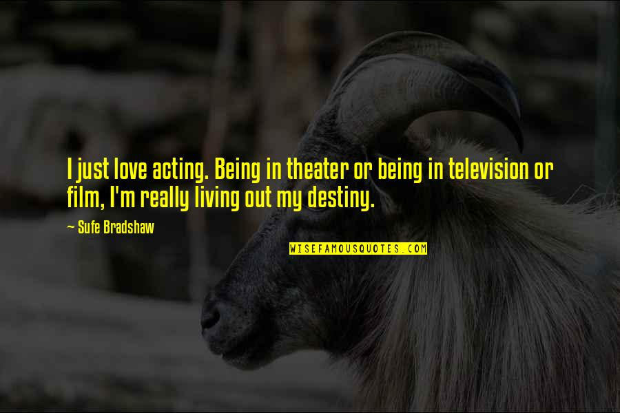 Aaron Sorkin Movie Quotes By Sufe Bradshaw: I just love acting. Being in theater or