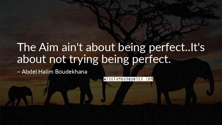 Abdel Halim Boudekhana quotes: The Aim ain't about being perfect..It's about not trying being perfect.