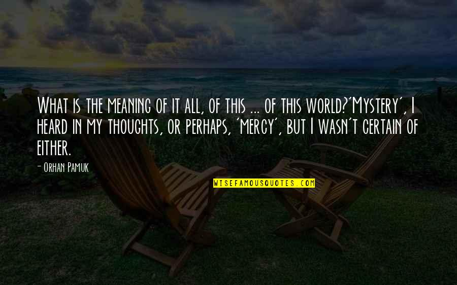 Abduzir Quotes By Orhan Pamuk: What is the meaning of it all, of