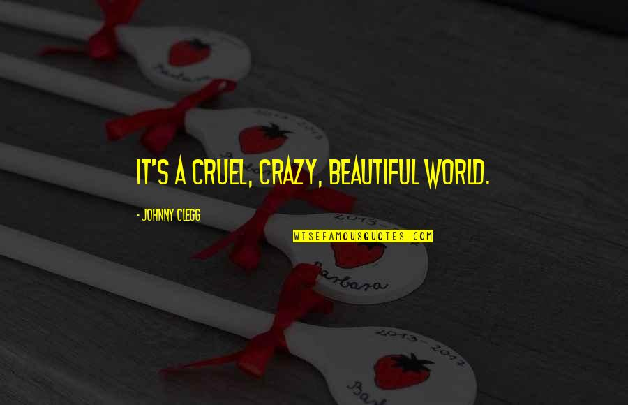 Ability To Succeed Quotes By Johnny Clegg: It's a cruel, crazy, beautiful world.