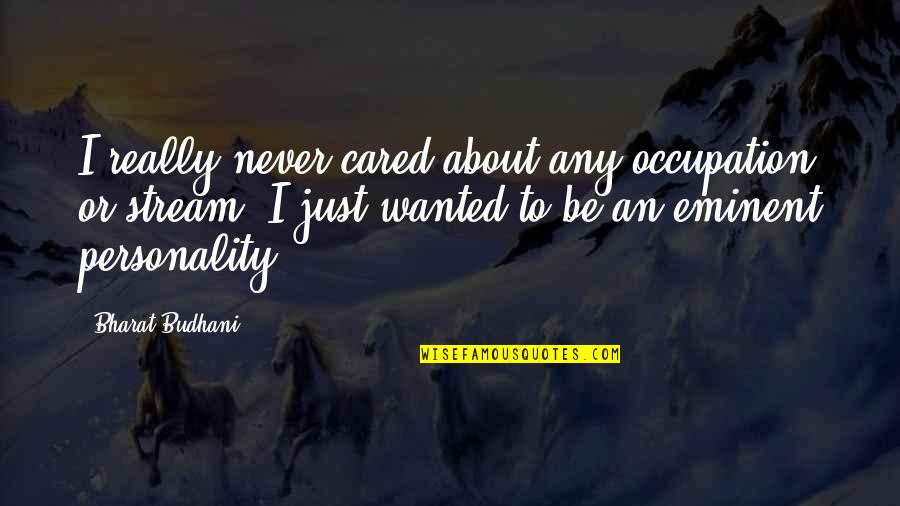 About Motivational Quotes By Bharat Budhani: I really never cared about any occupation or