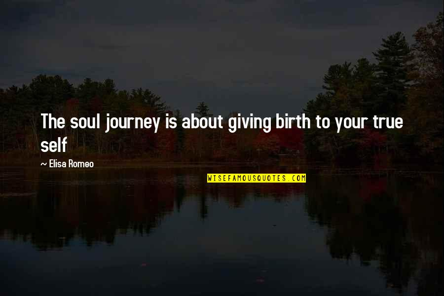 About The Journey Quotes By Elisa Romeo: The soul journey is about giving birth to