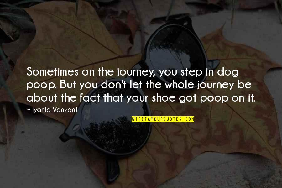 About The Journey Quotes By Iyanla Vanzant: Sometimes on the journey, you step in dog