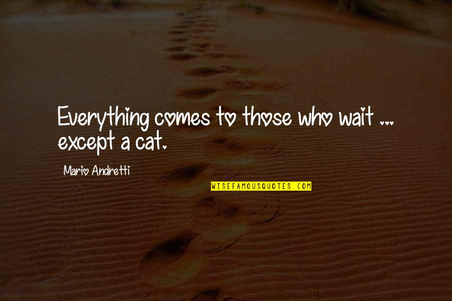 Abraham Joshua Heschel Social Justice Quotes By Mario Andretti: Everything comes to those who wait ... except