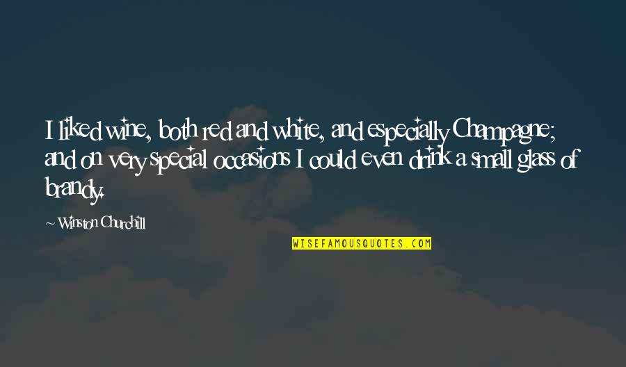 Abraham Wald Quotes By Winston Churchill: I liked wine, both red and white, and