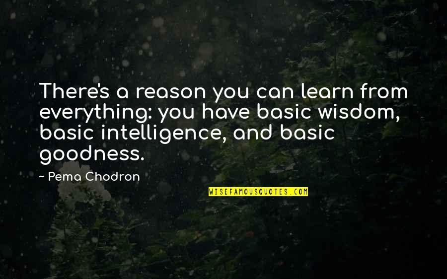 Abridgement Quotes By Pema Chodron: There's a reason you can learn from everything: