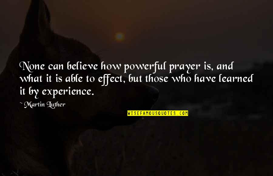 Abused Horses Quotes By Martin Luther: None can believe how powerful prayer is, and