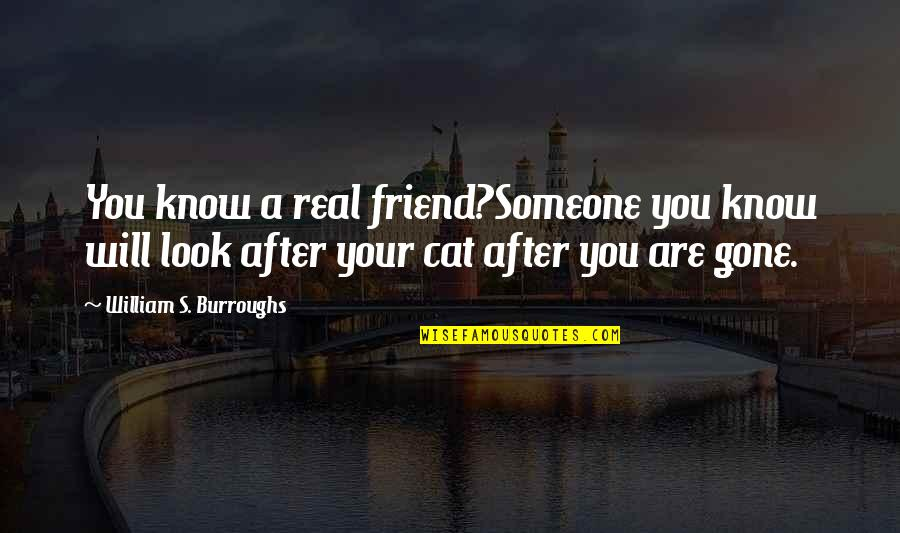 Academic Integrity Quotes By William S. Burroughs: You know a real friend?Someone you know will