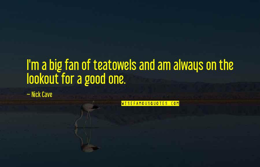 Academic Leadership Quotes By Nick Cave: I'm a big fan of teatowels and am