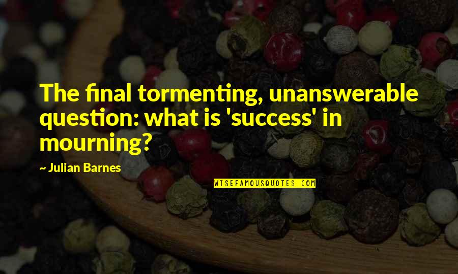 Accs Quotes By Julian Barnes: The final tormenting, unanswerable question: what is 'success'