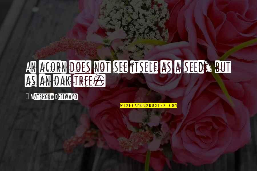 Acorn Tree Quotes By Matshona Dhliwayo: An acorn does not see itself as a