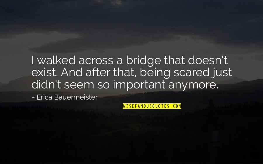 Across The Bridge Quotes By Erica Bauermeister: I walked across a bridge that doesn't exist.