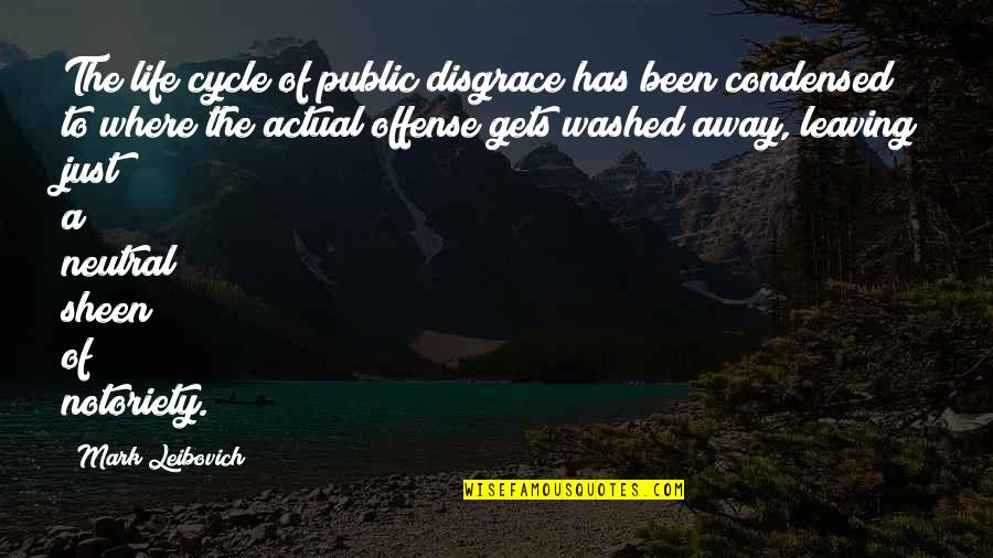 Actual Life Quotes By Mark Leibovich: The life cycle of public disgrace has been